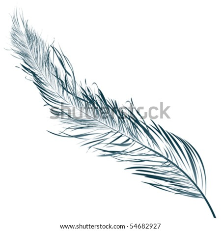Blue feather, hand drawn object against white - stock vector