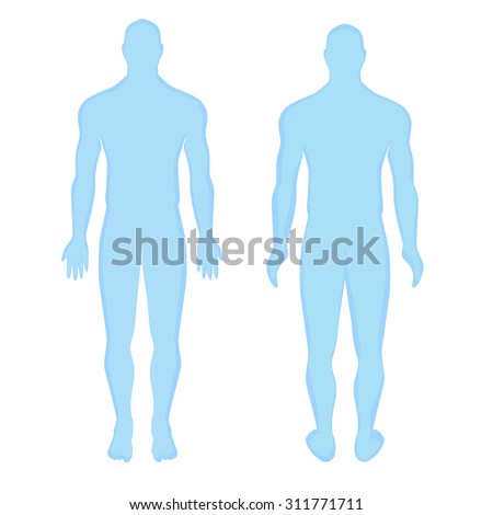 Blue human anatomical man silhouette view from the front. anatomical human man silhouette  view from the back. Modern Medical vector infographics. Medic anatomy - stock vector