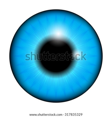 blue Iris, pupil of the eye, eye ball. Realistic vector illustration isolated on white background.
