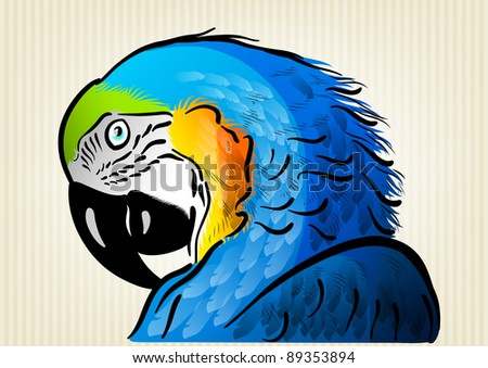 blue parrot on the background - stock vector