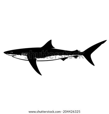 Blue Shark Silhouette Isolated on White - stock vector