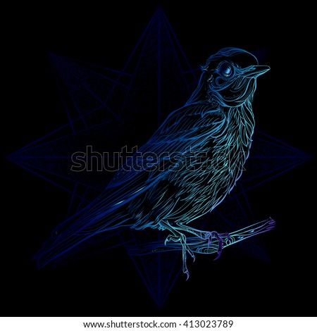 Blue Sialia. Vector illustration isolated on black background. Detailed drawing blue  bird - stock vector