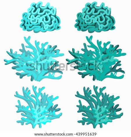 Blue underwater corals and polyps isolated on white background. Vector illustration. - stock vector