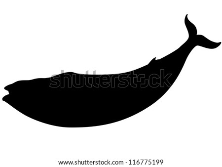 Blue whale silhouette - stock vector