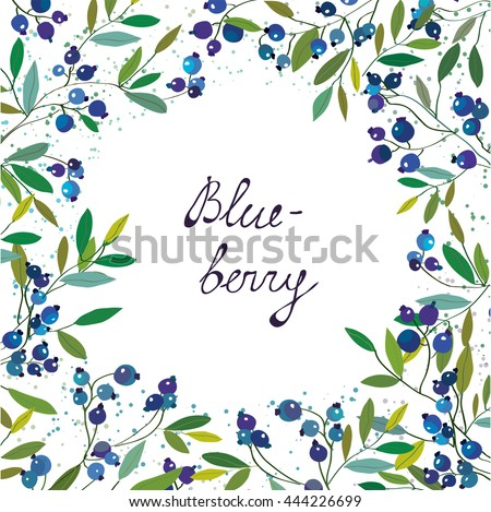 Blueberry background for the label or card. Vector graphic illustration