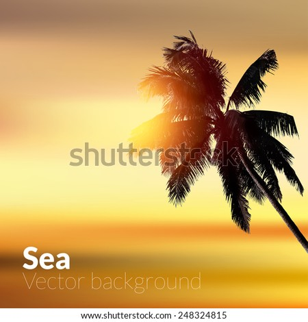 Blurry tropical beach background at sunset. Vector eps10 illustration. - stock vector