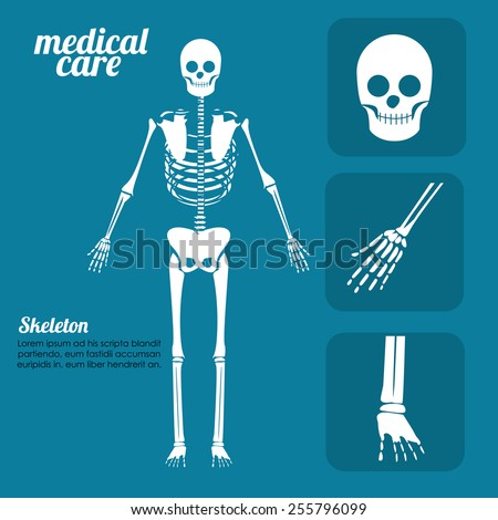 body,healthy desing over, blue background, vector illustration. - stock vector