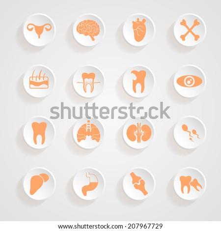 Body Icons button shadows  vector set - stock vector