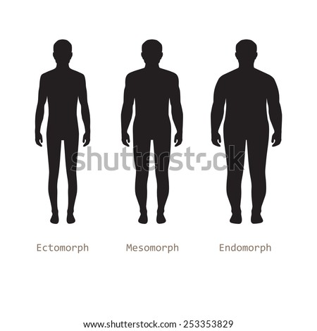 body male types, silhouette man naked figure, front human body - stock vector