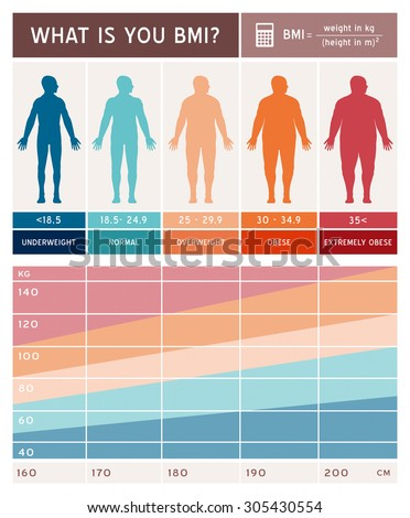 Body Mass Index Infographics Body Shapes Stock Vector Royalty Free
