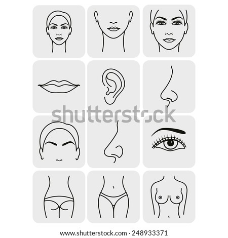 body parts icons plastic face surgery - stock vector