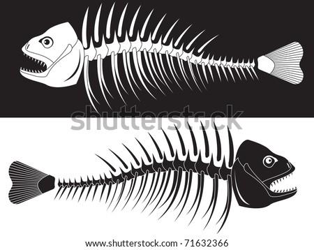Bones of a skeleton of fish in a vector - stock vector