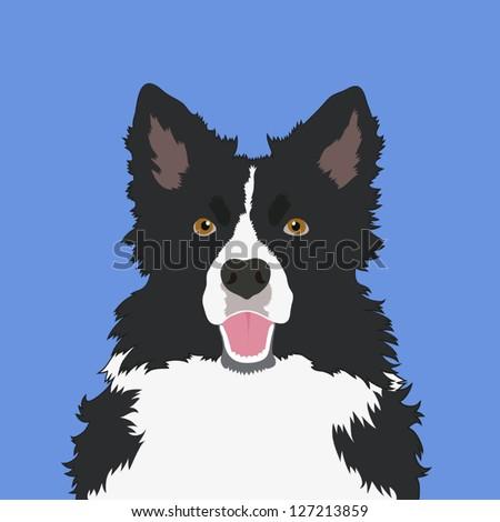 Border collie, The buddy dog - stock vector