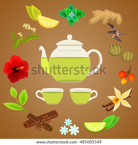 Botanical collection of  spice and herbs tea ingredients. glass Teapot and cusps. mint, ginger, cloves, linked green tea, tea leaves, hibiscus, berries, lemon, lime, vanilla, cinnamon, chamomile, lime