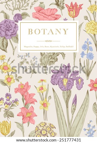 Botany. Vintage floral card. Vector illustration of style engravings. Pastel flowers. - stock vector