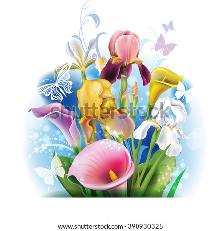 Bouquet of Calla lilies and irises - stock vector