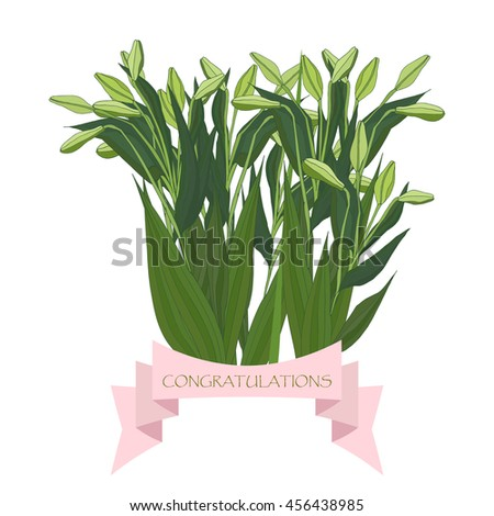 """Bouquet of light green lilies with unopened buds and a ribbon with text """"congratulations"""". - stock vector"""