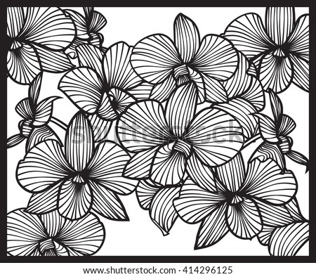 Bouquet of orchids. Pattern of orchids. Vector orchids. Set of vector orchids. Isolated orchids on a white background - stock vector