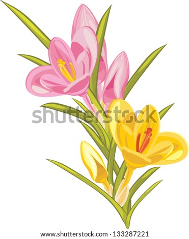 stock-vector-bouquet-of-pink-and-yellow-