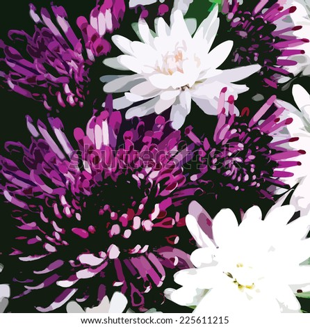 Bouquet of stylized violet and white  chrysanthemums on black background - stock vector