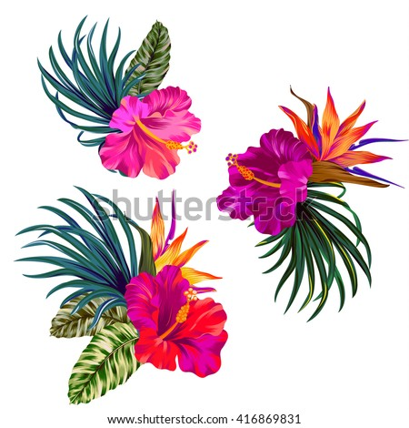 Bouquet with hibiscus flowers with pink petals, tropical leaves, and floral elements on white background. Watercolor with summer garden and wild flowers. design frame with vector botanical elements.