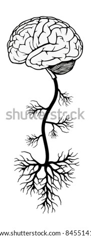 brain and tree. vector illustration - stock vector
