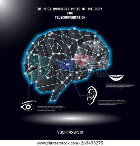 Brain communication vector conception - stock vector