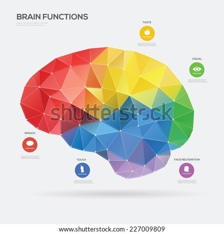 Brain Function concept. Vector illustration - stock vector