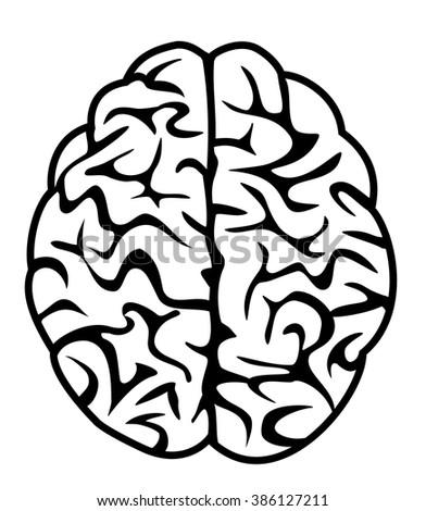 brain icon, symbol, illustration, vector - stock vector