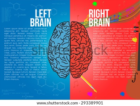 Brain. Left and Right Brain - stock vector