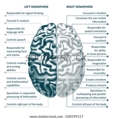 the left and right hemispheres The left brain controls activities such as speaking, reading, memory, analysis and controlling the right side of the body as such, damage to the left brain affects these processes, and may result in cognitive issues, difficulty speaking or writing, and difficulty with the right side of the body.