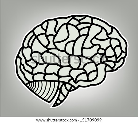 brain model. EPS10 illustration  - stock vector