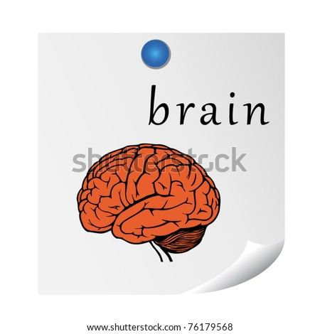 brain on sticker. illustration for education. EPS10 - stock vector
