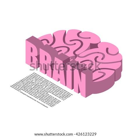 Brain structure of infographics. Brains headache human cortex - stock vector
