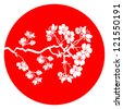 Branch of cherry blossom in red  japanese flag background - stock vector