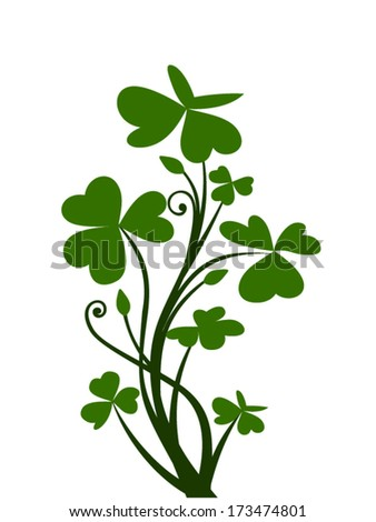 Branch of shamrock. Vector illustration. - stock vector