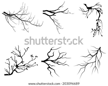 branch Silhouette shapes - stock vector