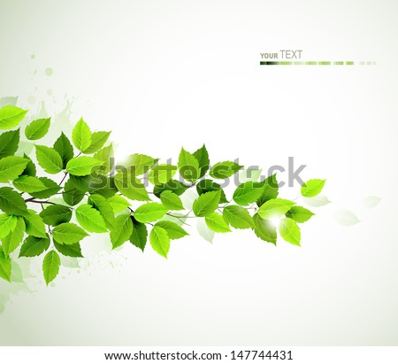 branch with fresh green leaves  - stock vector