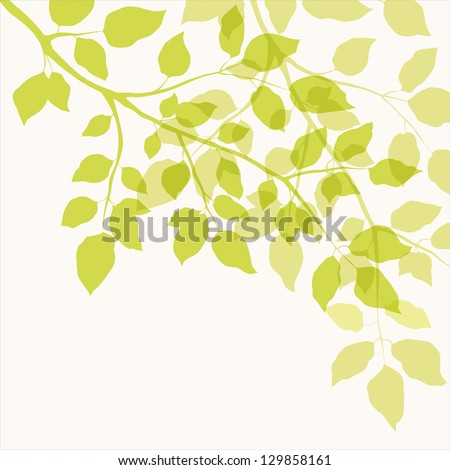 Branch with green leaves. Floral background - stock vector