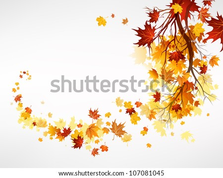 Branch with maple leaves with space for text - stock vector