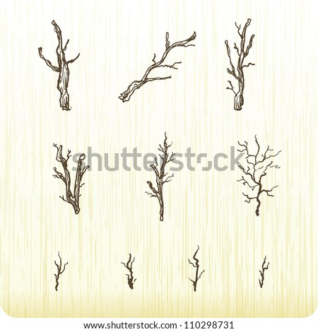 Branches - stock vector