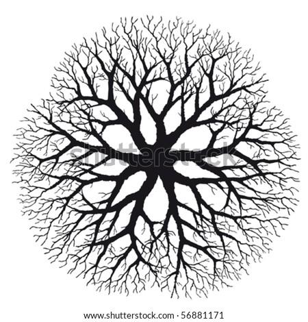 Branching - stock vector