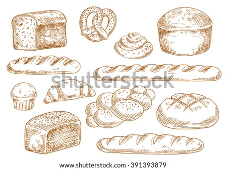 Bread sketches with long loaves, baguette, wheat and rye bread, croissant, cupcake, pretzel, cinnamon roll and braided bun. Bakery and pastry products in vintage engraving style for food design