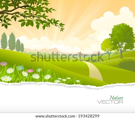 Breath taking scene of a path going through green fields towards the hills. - stock vector