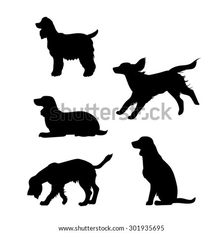 breed of a dog cocker spaniel vector icons and silhouettes set of illustrations in different