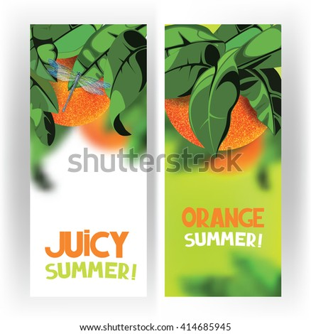 Bright banners with oranges on the tree with green leaves on the white background