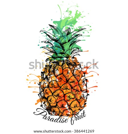 Bright color Pineapple. Vector illustration.