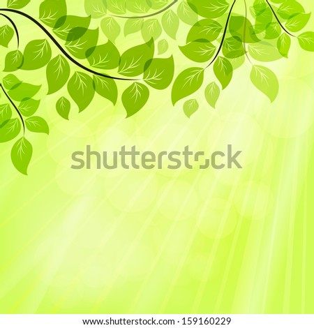 Bright green summer vector background with tree leaves. - stock vector