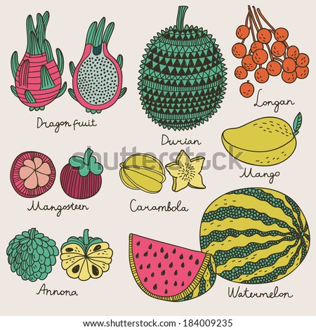 Bright tropical fruit set in vector. Dragon fruit, durian, longan, mangosteen, carambola, mango, annona and watermelon. Cute cartoon vector card in vintage style - stock vector