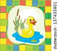 Bright  yellow duck on the blue lake - stock photo